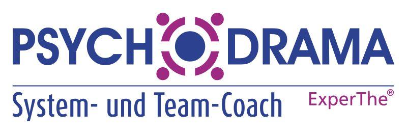 System- und Team-Coach